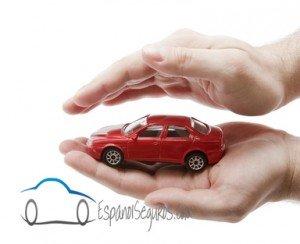 contratar seguro de auto online en tampa fl
