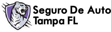 Seguro de Auto, Carro, Automovil Tampa